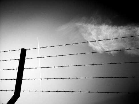 barbed wire by Leo Gesess Photographer Switzerland www.comcom.ooo