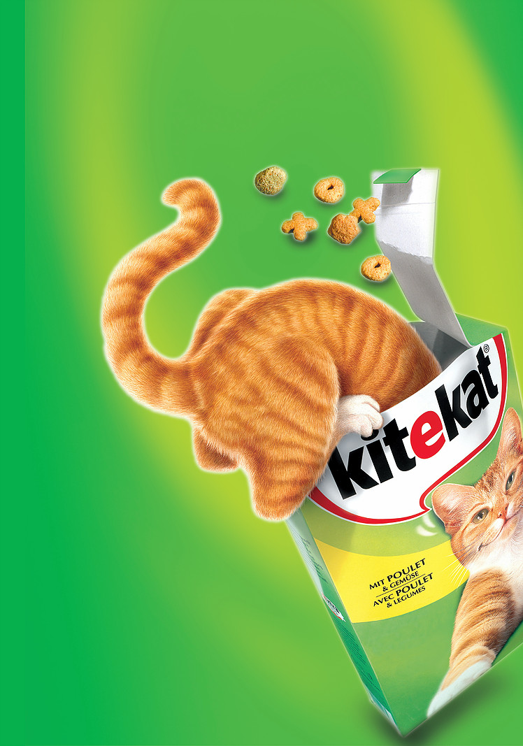 Kitekat - internationale Kampagne