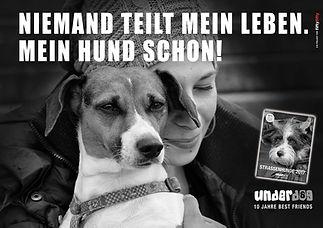 underdog_XXL_Strassenplakat_in_Düsseldo
