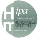 IPA_Award_2020_Leo_Gesess.png