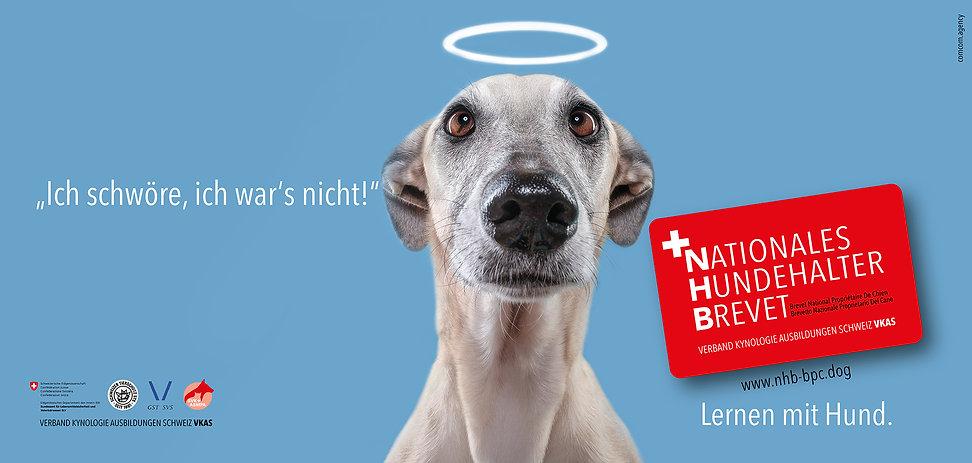comcom.agency | Werbeagentur I Advertising Agency