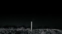 BirdSky-Drone-Photography-Whoota-Sea-Eagle-Point-N.S.W-5