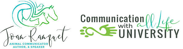 Joan_CWALU_Logo-1.jpeg