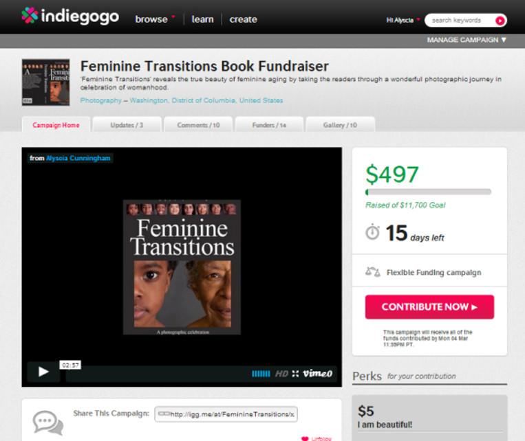 Image of Feminine Transitions Indiegogo campaign.
