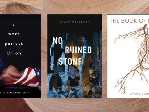 New Book News: Teri Ellen Cross Davis, Shara McCallum & Nicole Santalucia (YouTube Live)