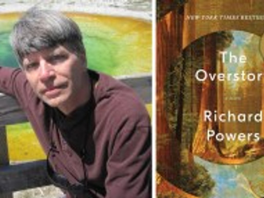 Food for Thought: The Overstory