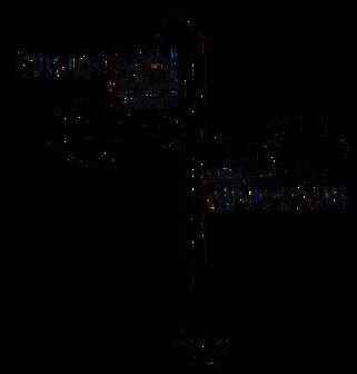 sj_transparent