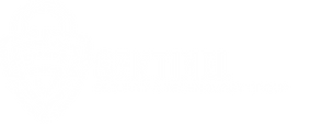 SSTG White Logo.png