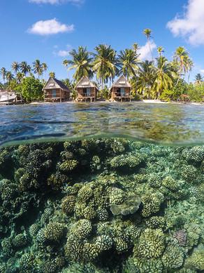 French-Polynesia-2019-2737.jpg