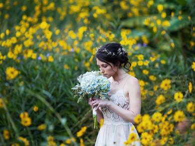 Spring Weddings Coming Soon