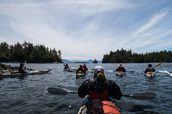 Kayaking the Johnstone Strait