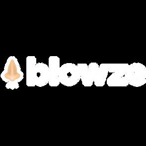 blowze_logo_white_v2.png