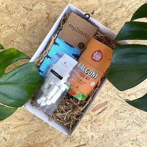 Little Veg & Socks Box