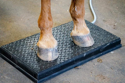 Double Hoof Box