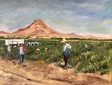 Picacho Mountain Braceros
