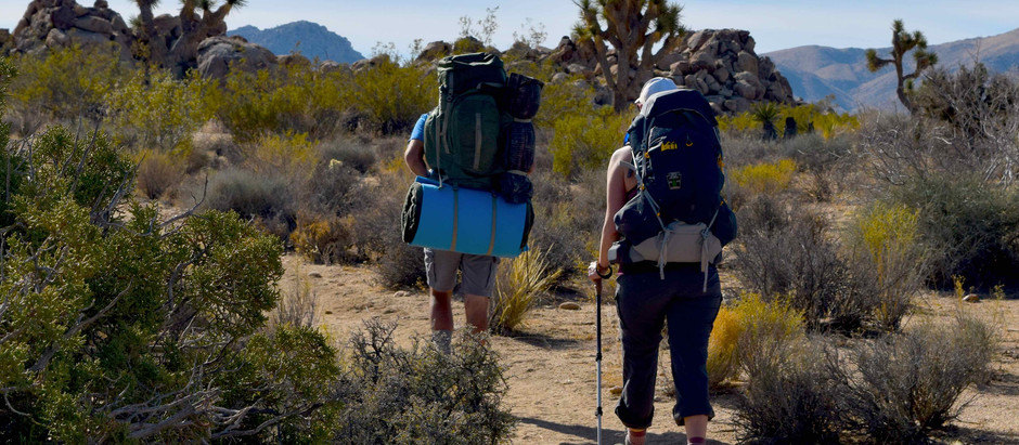6 Reasons To Go Backpacking In Joshua Tree National Park This Winter