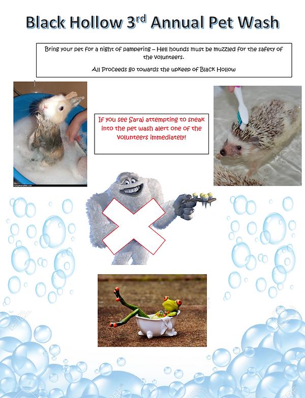 Pet Wash Ad.PNG