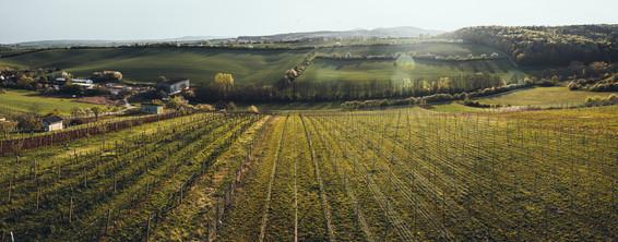 Jižní Morava, panorama