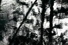 Water, abstract, caldera, bamboo, creative, pentax, reflection, suigen, source, ubuyama, kumamoto, japan, photography, refraction, movement, light, art, acqua, aqua, kyushu, ikeyama, nature, macro, black and white