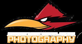photobird3.png