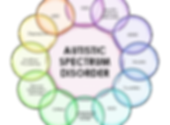 Autism_Spectrum_Disorder-copy-300x279.pn