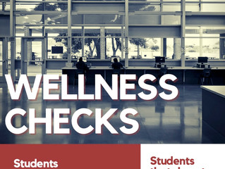 Tech Wellness Checks