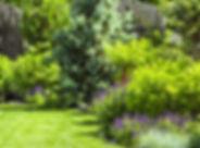 MW-HH354_garden_20190410155432_ZH.jpg