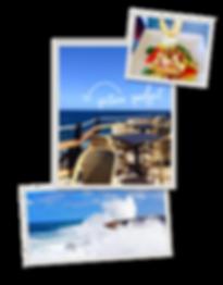 Animal Flower Cave Restaurant - Delicious Bajan Food - Logo by Designers Coast