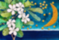 "Caribbean Illustration inspired by Nebra Sky Disk titled ""Franginebra"" by Cathy Cummins"