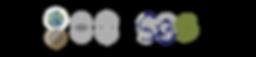 SigniaGlobe new logo development process