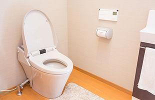 toilet_photo.jpg