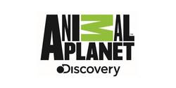 logo-animal-planetwp