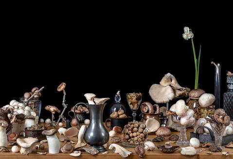 Mushroom---Eyal-Granit-Photography.jpg