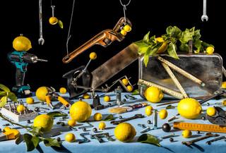 Still-life-lemons-and-tools 2020.jpg