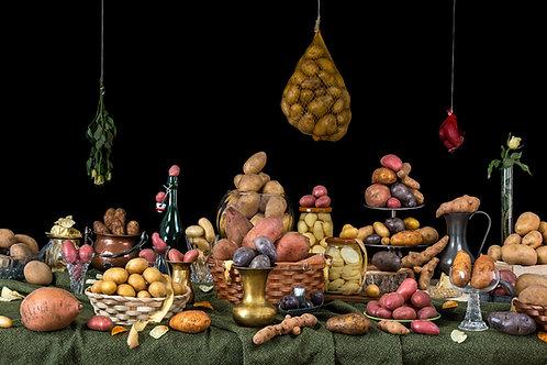Still Life Potatoes, 2016