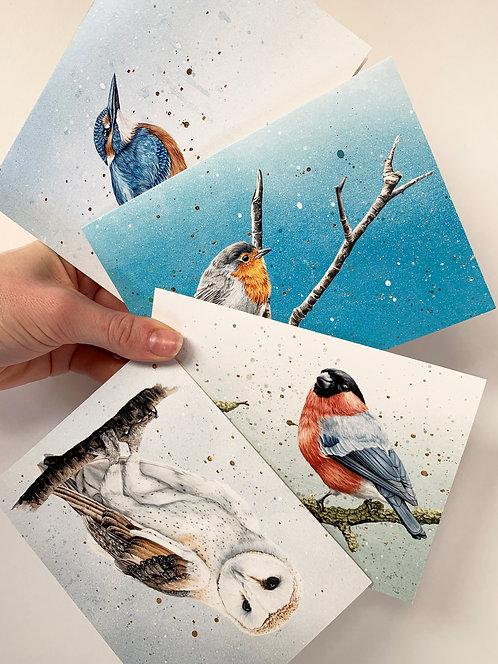 Art Cards Set of 4