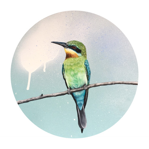 Emerald - Bee Eater