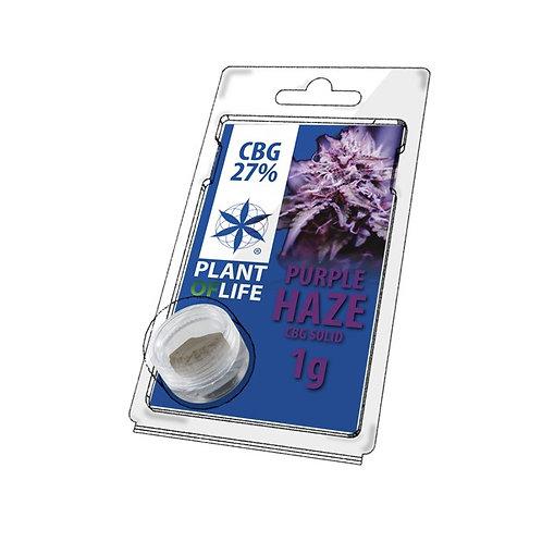 Purple Haze CBG Hash 27% CBG