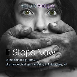 Secure Bridges Graphic.png