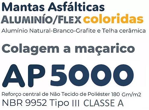 LOGO AP5000.jpg