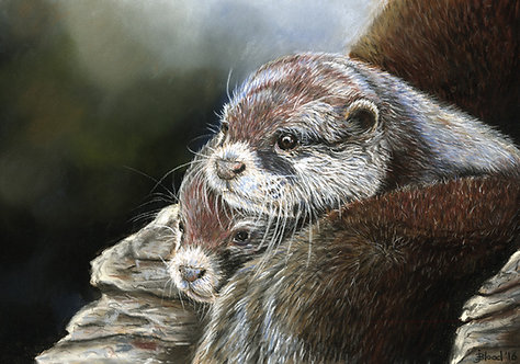 Otters Limited Edition Print