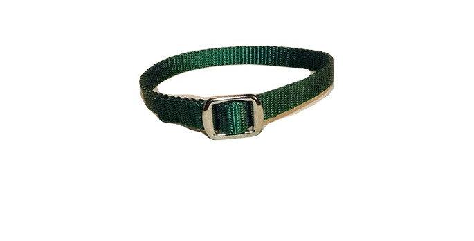 Dark Green 1/2 inch wide nylon puppy collar marker.