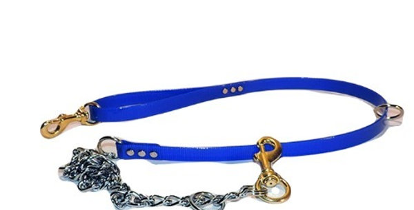 Blue 3/4 inch wide dayglo lead with chain.