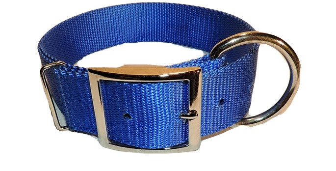 Blue 2 ply 1 1/2 inch wide nylon dog collar with heavy duty Dee ring
