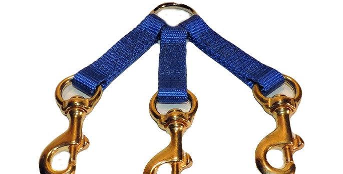 Blue nylon 3 dog coupler.