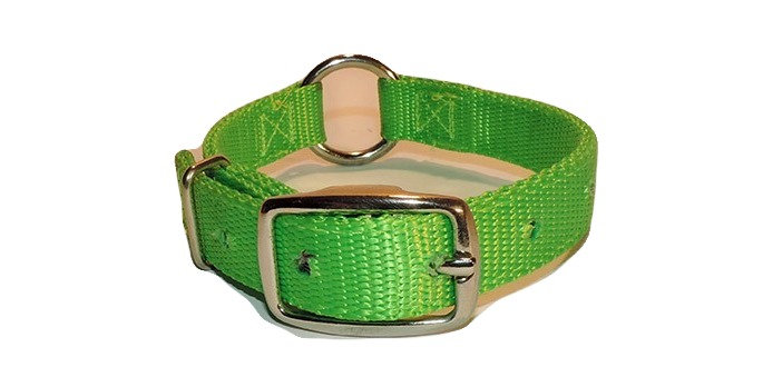 Neon green 3/4 inch wide nylon dog collar with center ring.