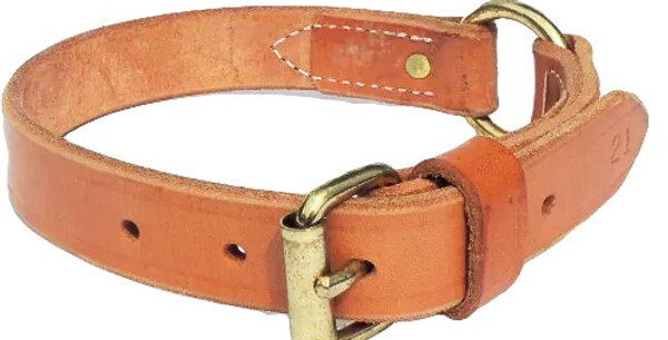 1 inch wide brown leather dog collar with brass buckle