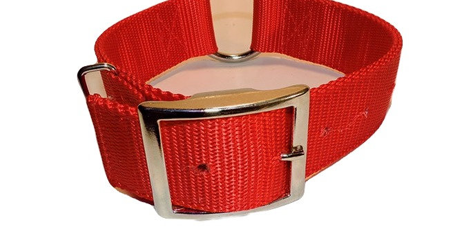 Red nylon dog collar 2 ply 1 1/2 inch wide with heavy duty center ring
