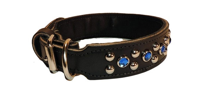 Black Leather fancy dog collar. Collar has two rows has nickle spots with blue jewels in between. Collar has a Dee ring.