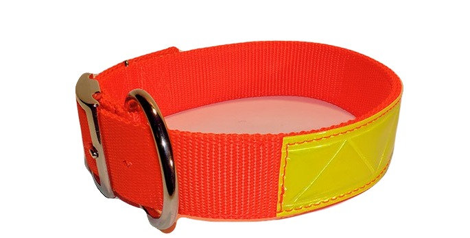 2 Ply Nylon Reflective Dog Collar With Dee Ring 1 1/2 in. Wide